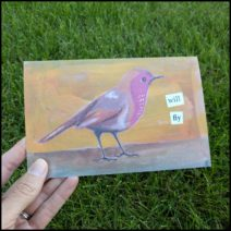 Will Fly greeting card