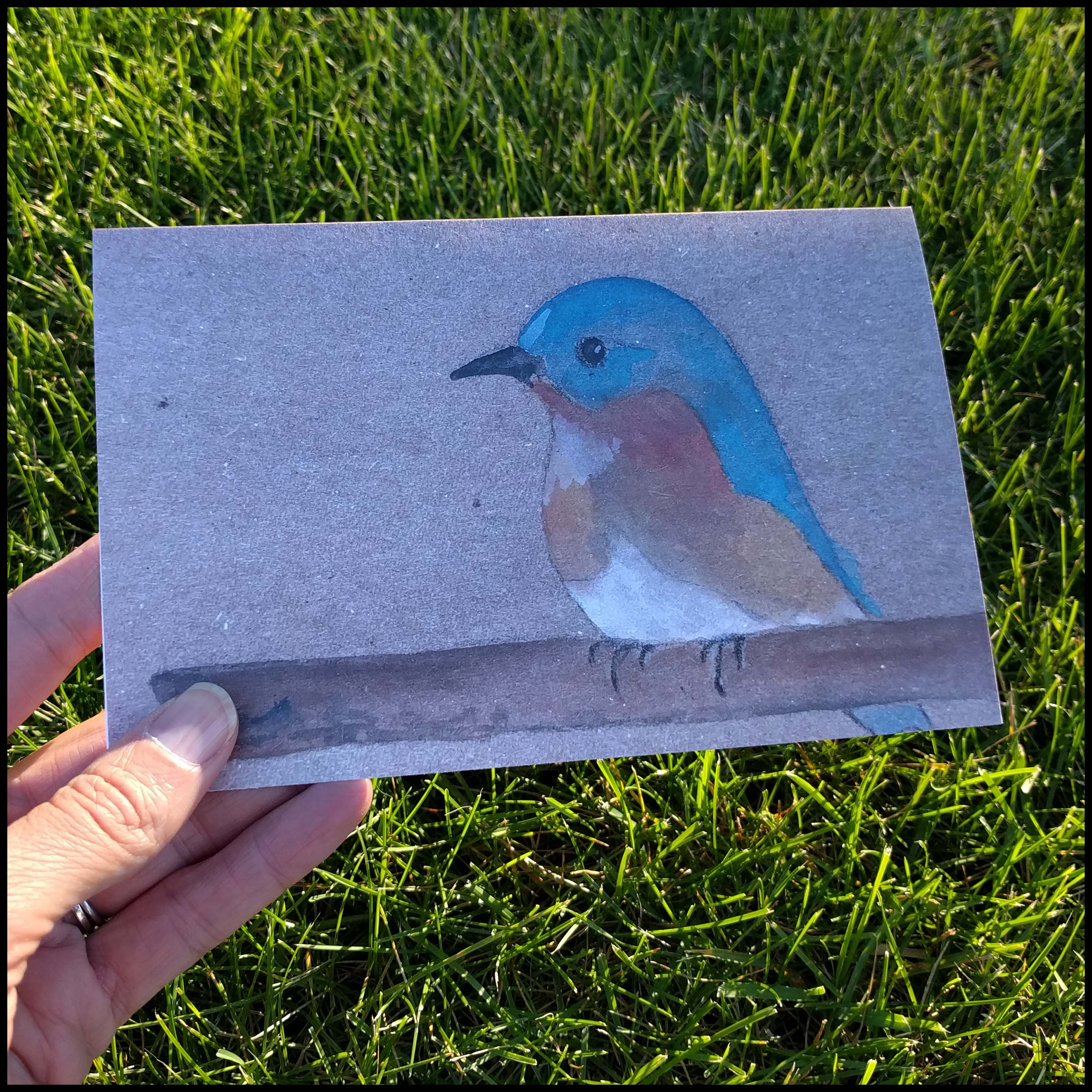 A Little Birdie Greeting Card Tracee Vetting Wolf